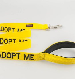 "Friendly Dog Collars ""Adopt Me"" Lead"