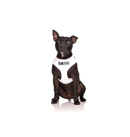 "Friendly Dog Collars ""Blind Dog"" Vest Dog Harness *CLEARANCE"