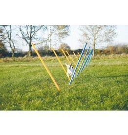 Trixie Dog Activity Agility Slalom, Blue & Orange, 115 x 3cm, 12 pieces