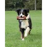 Trixie Dog Canvas Activity Preydummy Dog Toy, Brown