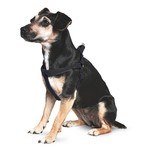 Ancol Heritage Reflective Padded Nylon Dog Harness, Black