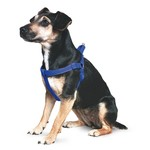 Ancol Heritage Reflective Padded Nylon Dog Harness, Blue