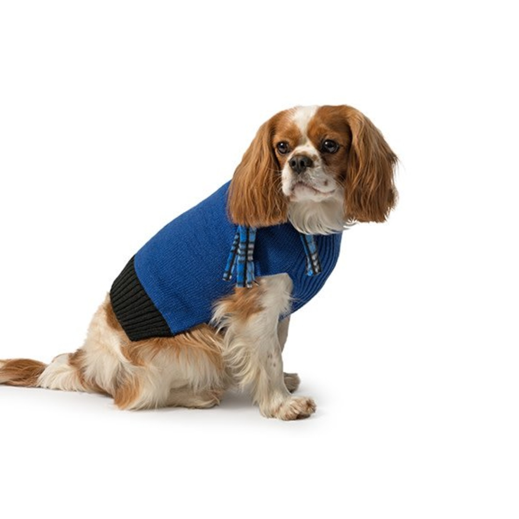 Ancol Blue Dog Jumper with Scarf