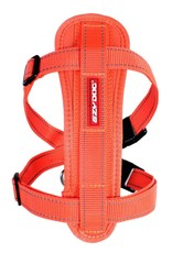 EzyDog Chest Plate Dog Harness with Seat Belt Loop, Burnt Orange
