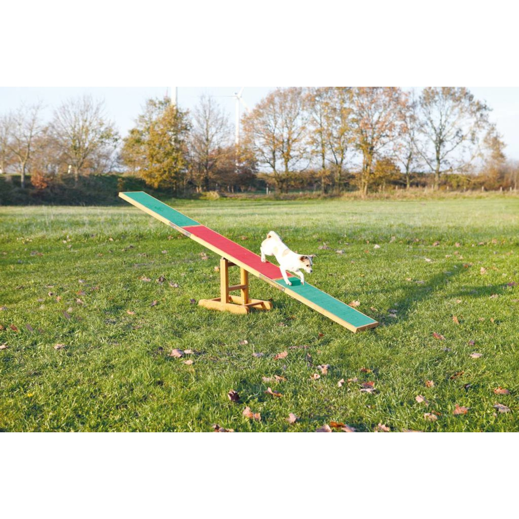 Trixie Dog Activity Agility Seesaw, 300 x 54 x 34cm