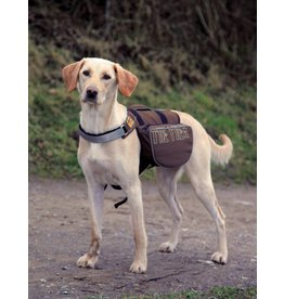 Trixie On The Trek Dog Backpack, 31 x 17cm**