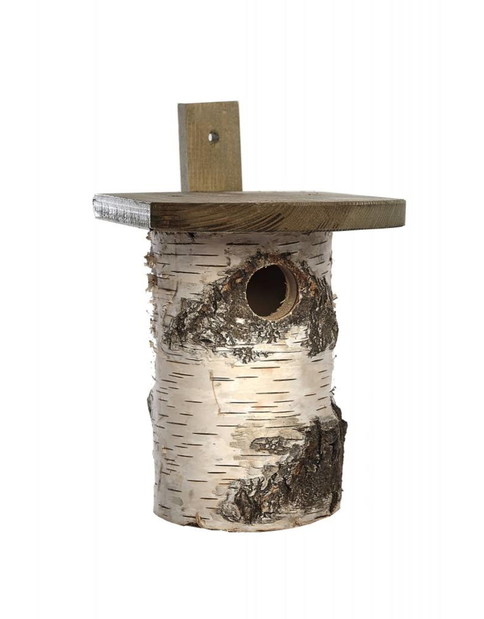 Tom Chambers Birch Nest Wild Bird Box (FSC)