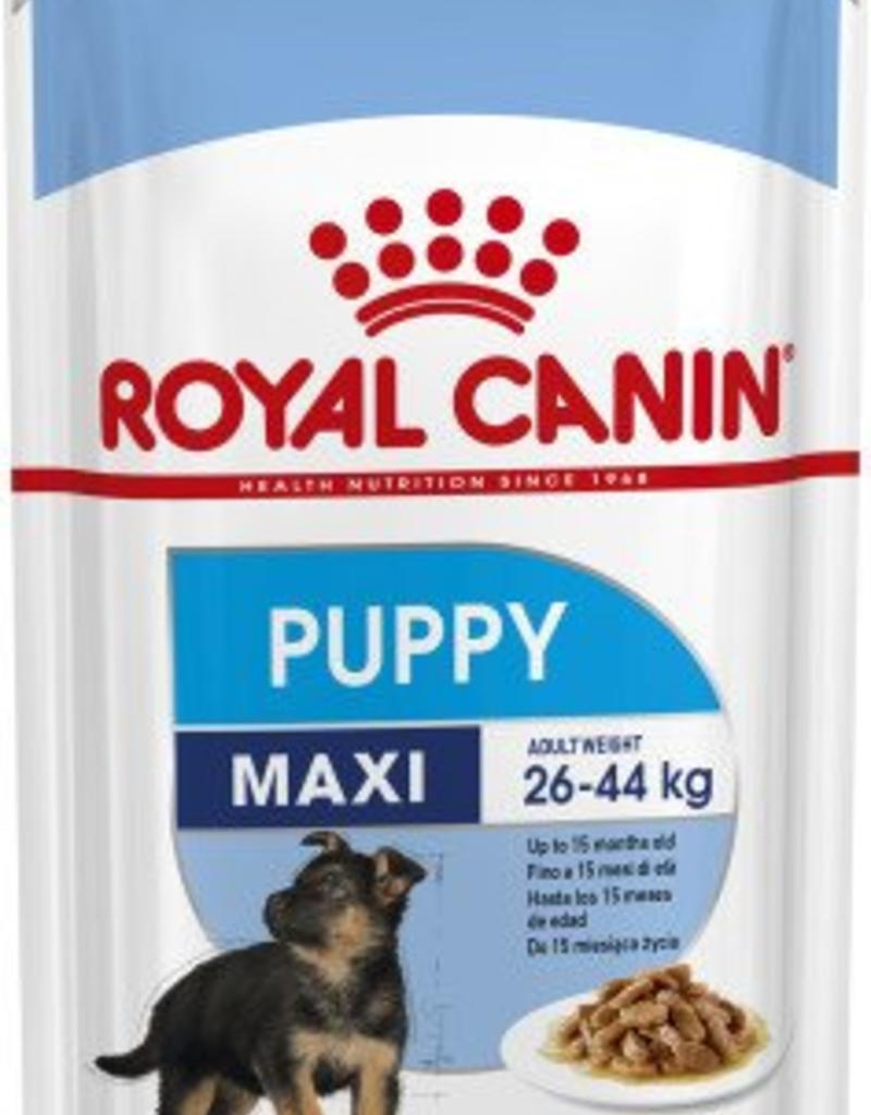 Royal Canin Maxi Puppy Dog Wet Food Pouch 140g, Box of 10