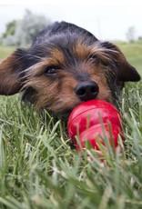 KONG Easy Treat Paste Dog Treat, Peanut Butter, 226g
