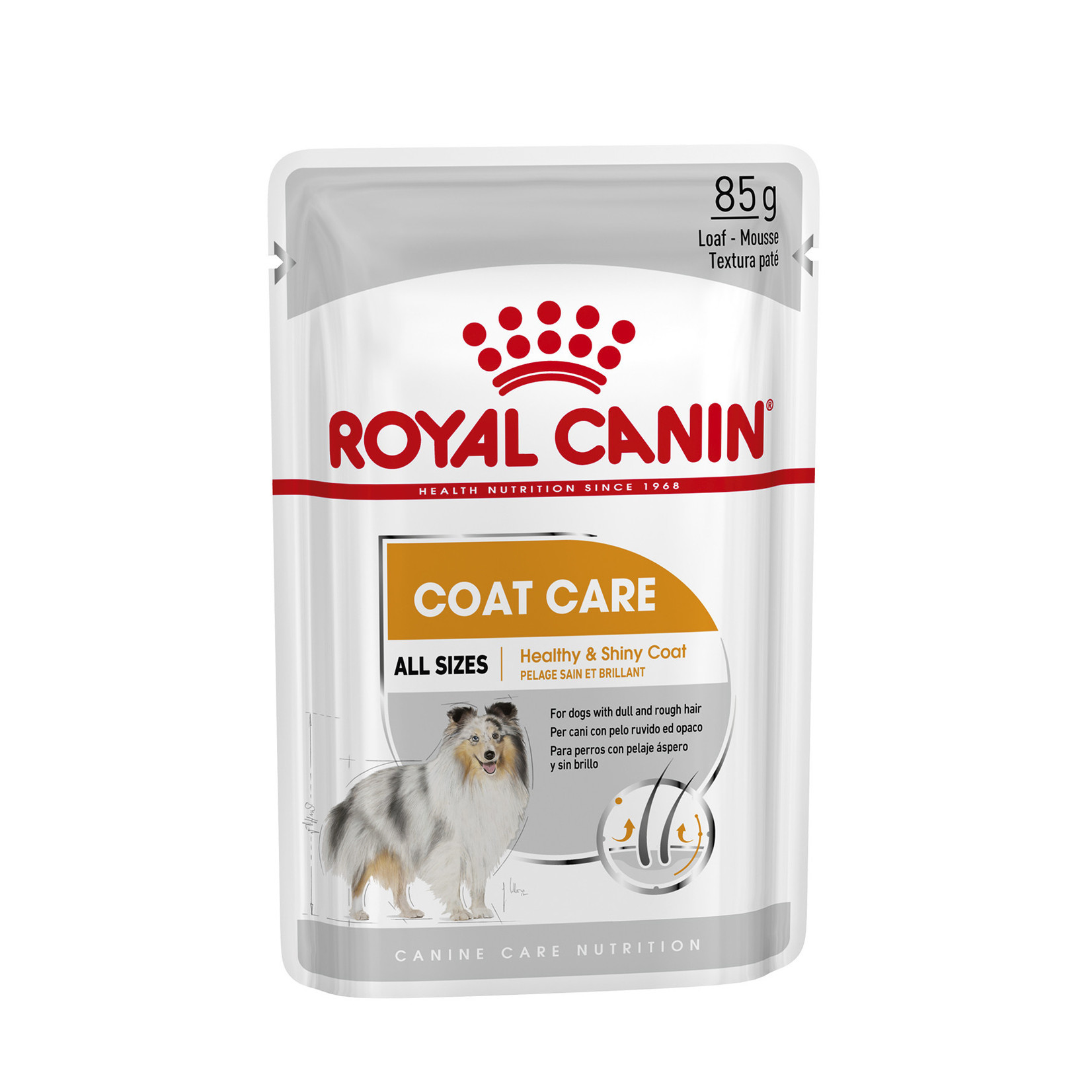 Royal Canin Coat Care Loaf Adult Dog Wet Food Pouch, 85g, box of 12