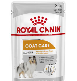Royal Canin Coat Loaf Wet Pouch Dog Food, Box of 12