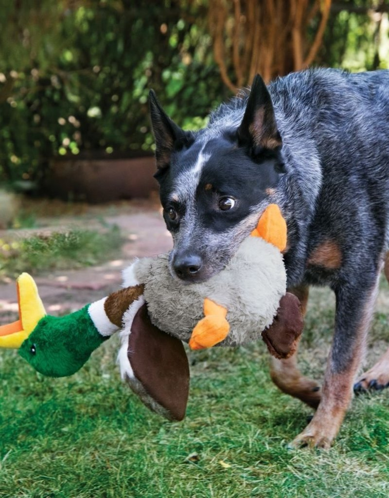 KONG Shakers Honkers Duck Dog Toy