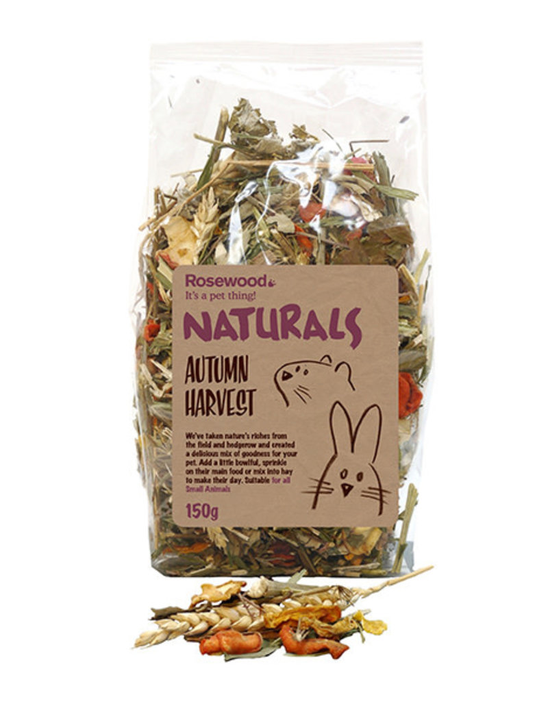 Rosewood Naturals Small Animal Treats, Autumn Harvest 150g