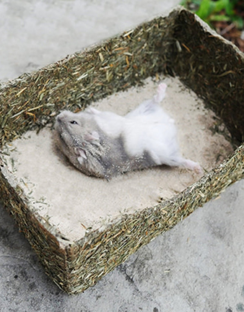 Rosewood Rollin' Rodent Small Animal Sand Bath