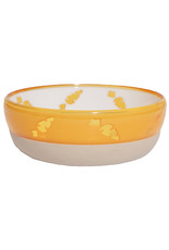 Rosewood Translucent Carrot Bowl for Small Animals