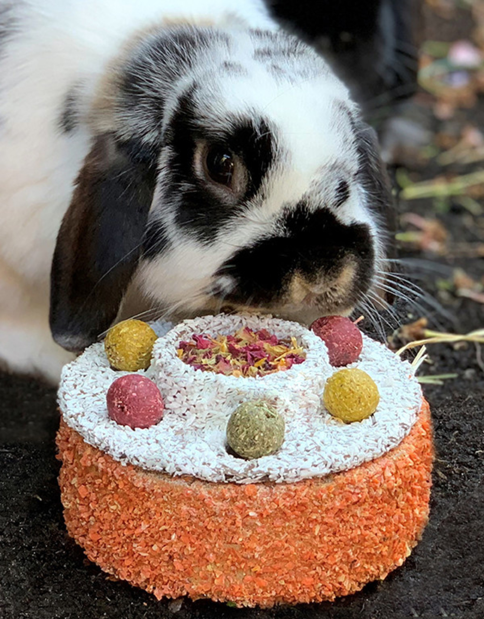 Rosewood Natural's Celebration Cake for Small Animals