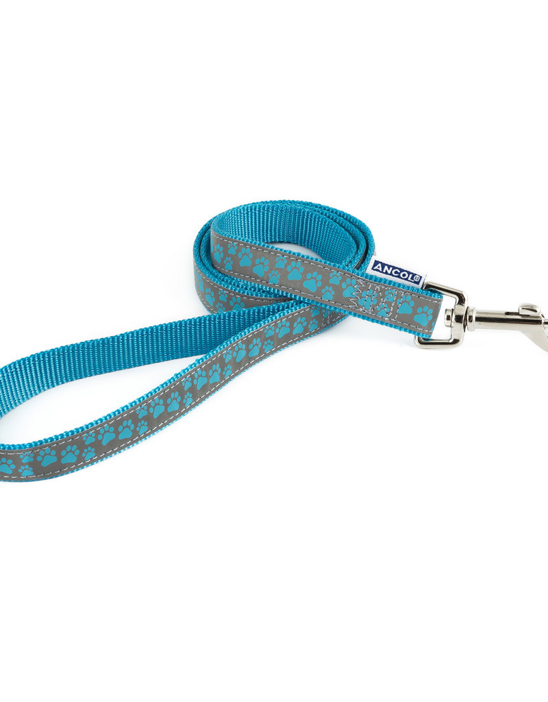 Ancol Nylon Reflective Blue Paw Dog Lead 19mm x 1m