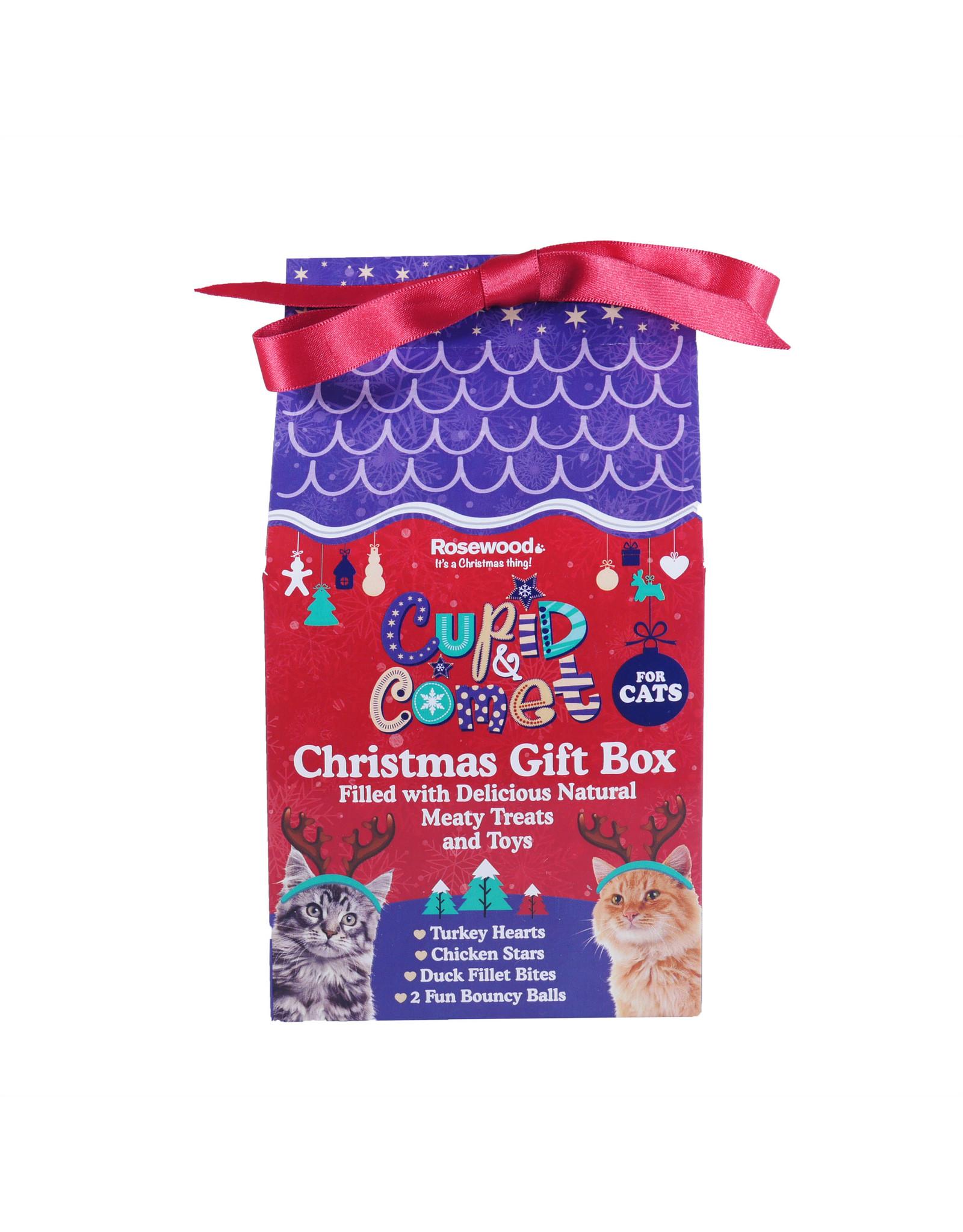 Rosewood Christmas Christmas Gift Box for Cats, 100g
