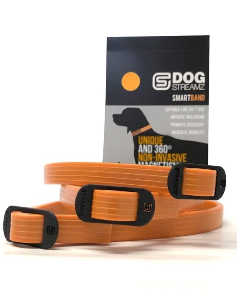 Streamz Silicone Band for Dogs Orange 55cm