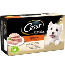 Cesar Adult Wet Dog Food Tray Classic Selection, 4 x 150g