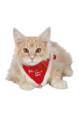 Trixie Christmas Cat or  Dog Collar with Neckerchief
