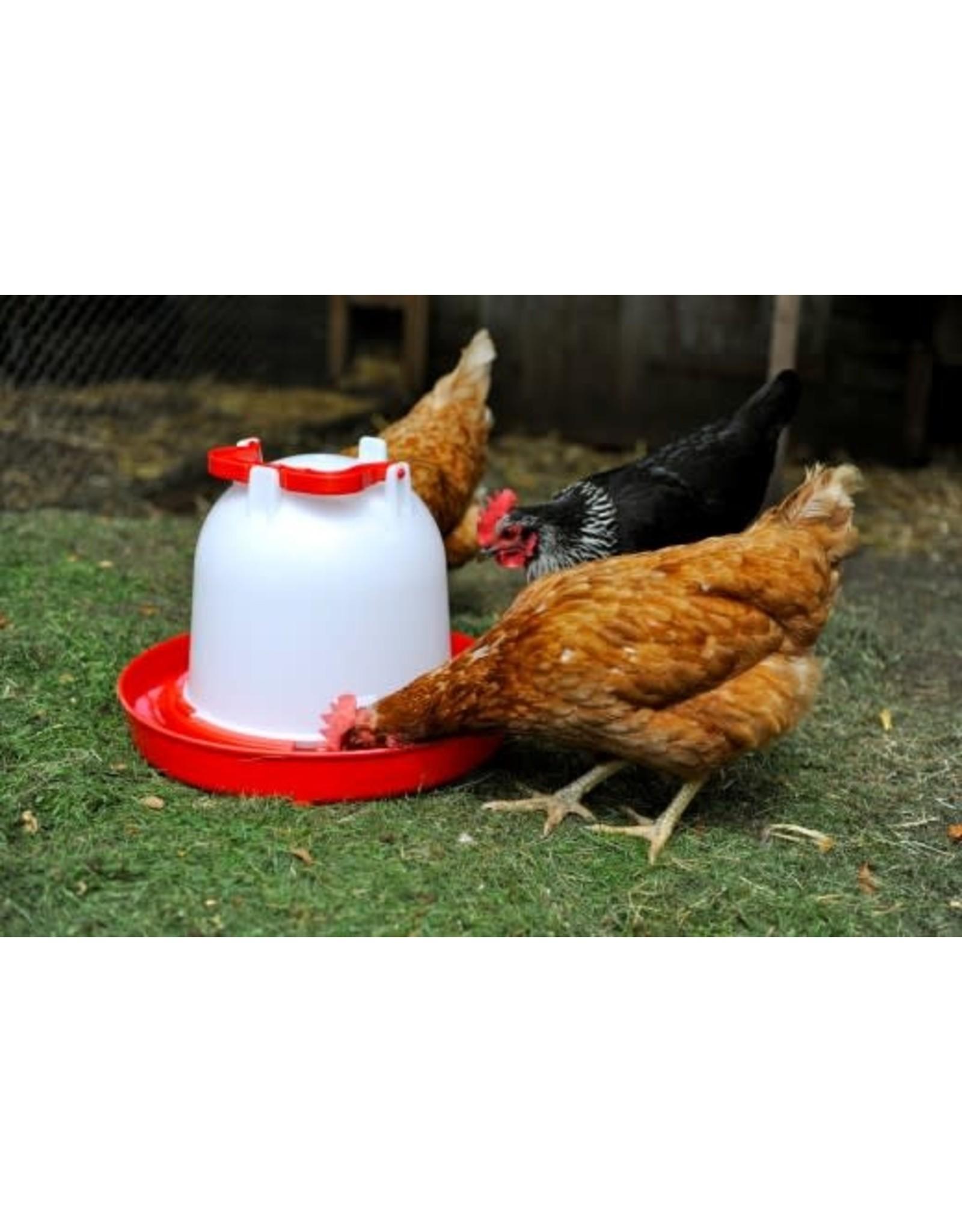 Supa Deluxe Heavy Duty Red & White Plastic Poultry Drinker, 6 litre