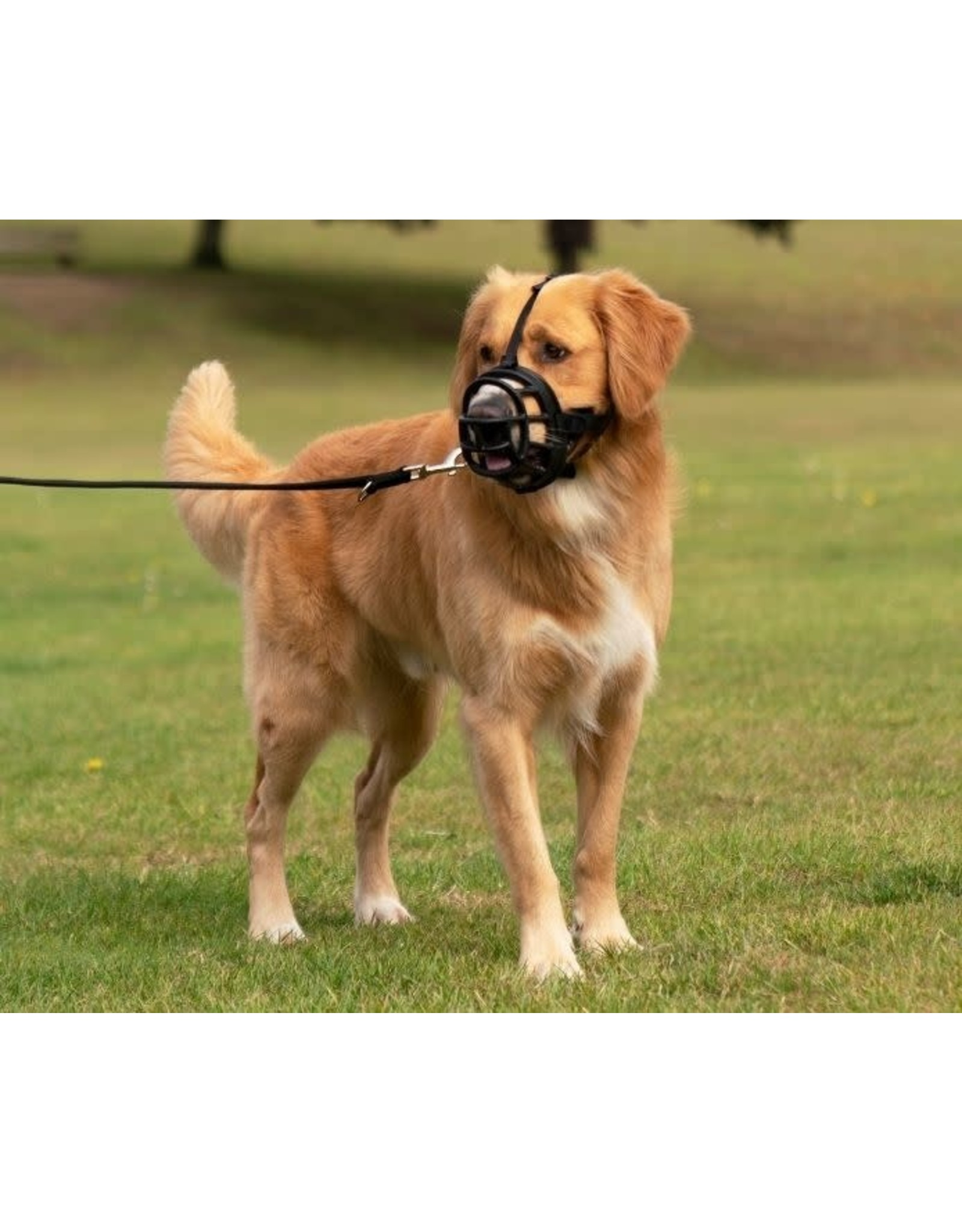 Company of Animals Baskerville Ultra Dog Muzzle