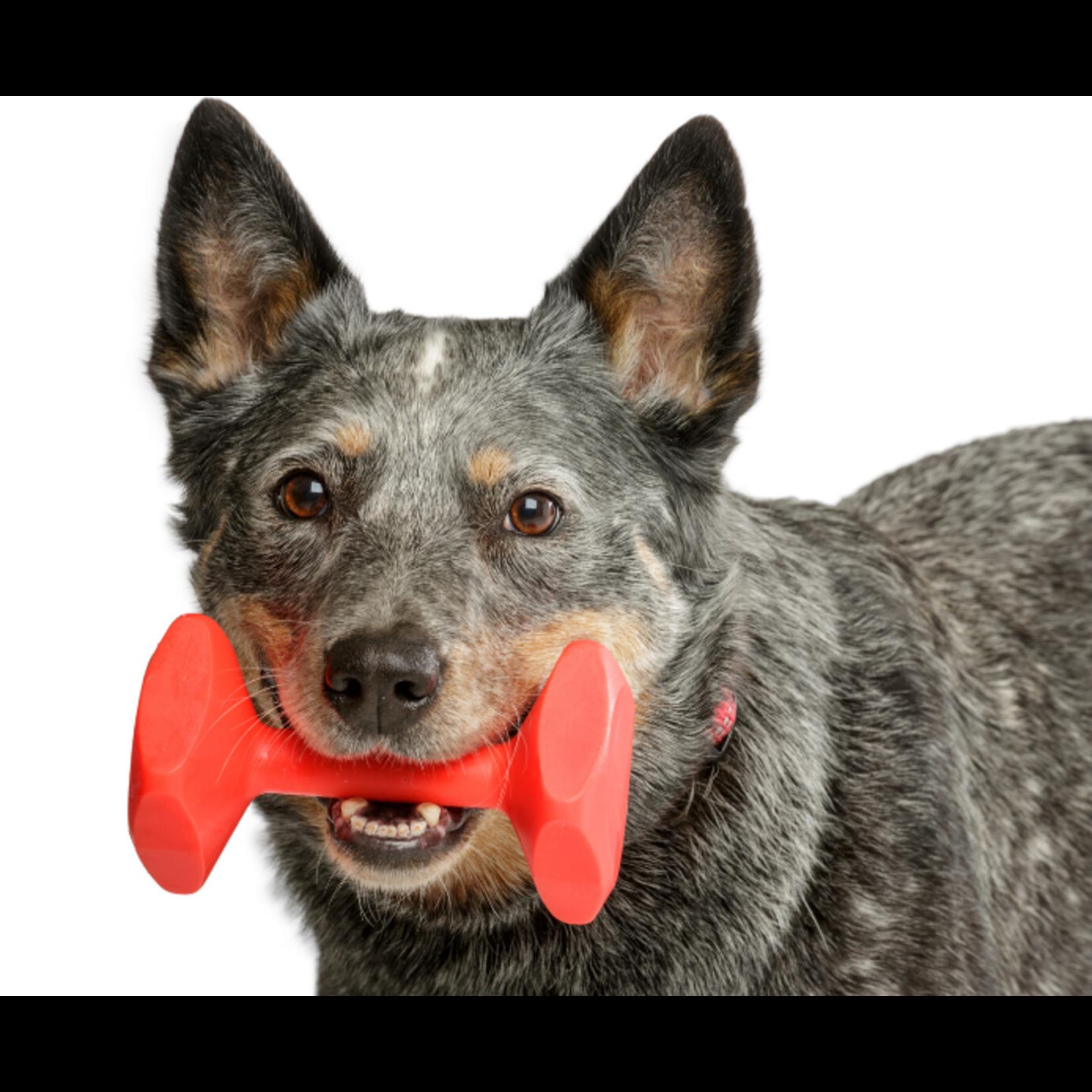 Company of Animals Floating Nylon Dog Training Dumbbell