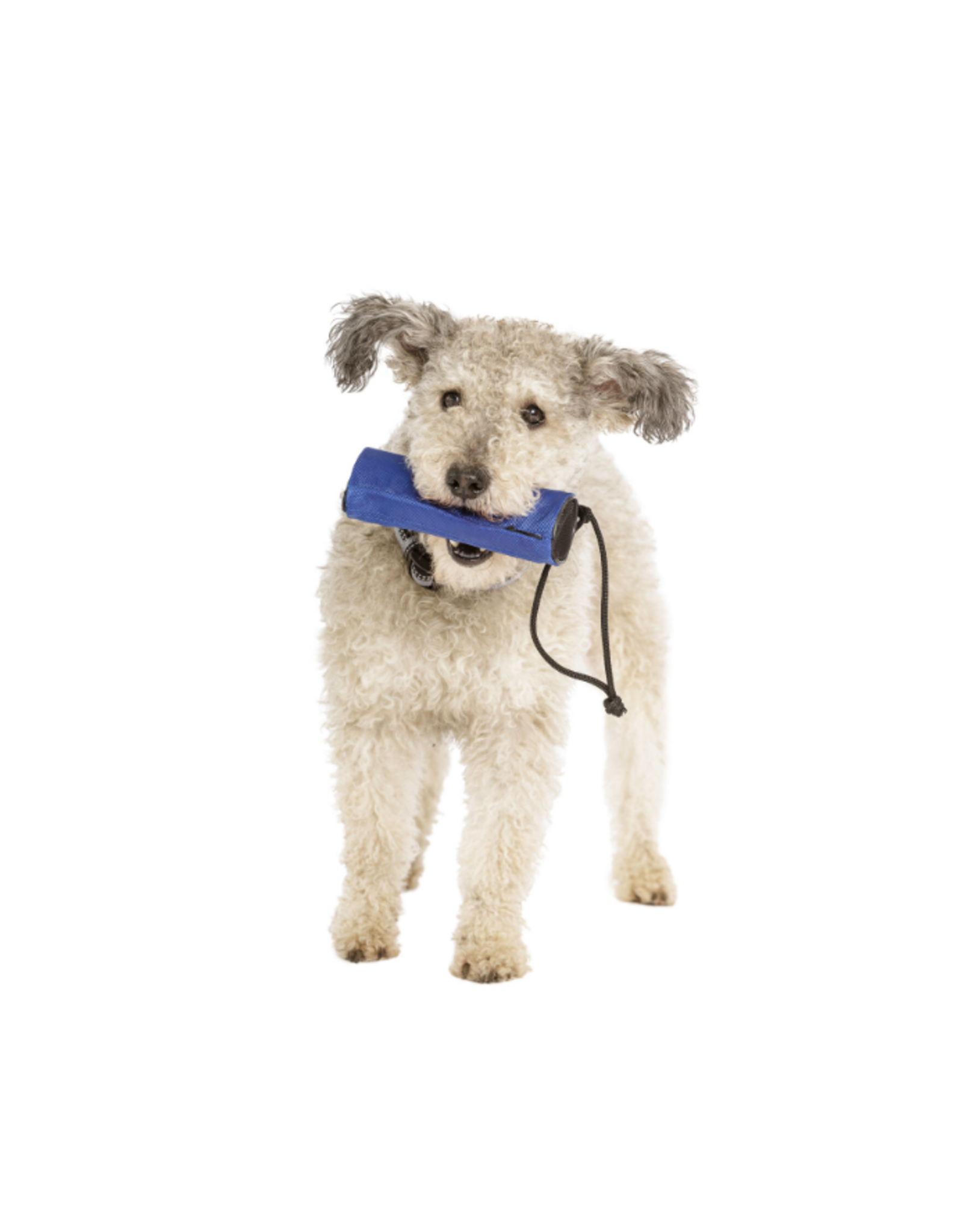 Company of Animals Dog Retriever Training Aid with Built in Treat Dispenser