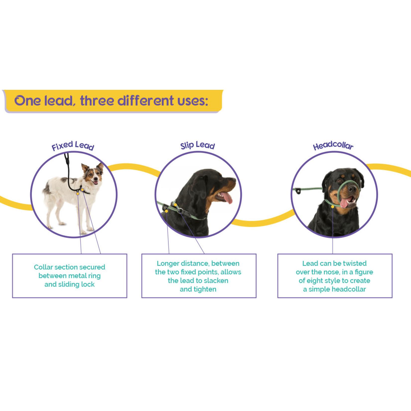 Company of Animals Dog 3 in 1 Slip Lead, Black