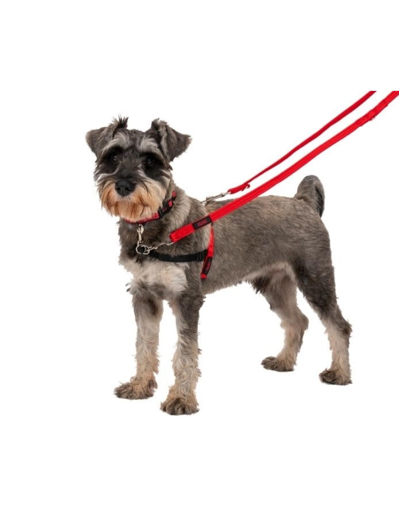 Company of Animals Halti Dog Training Lead, Red