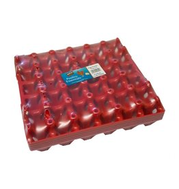 Extra Select Plastic Egg Tray, takes 30 Eggs
