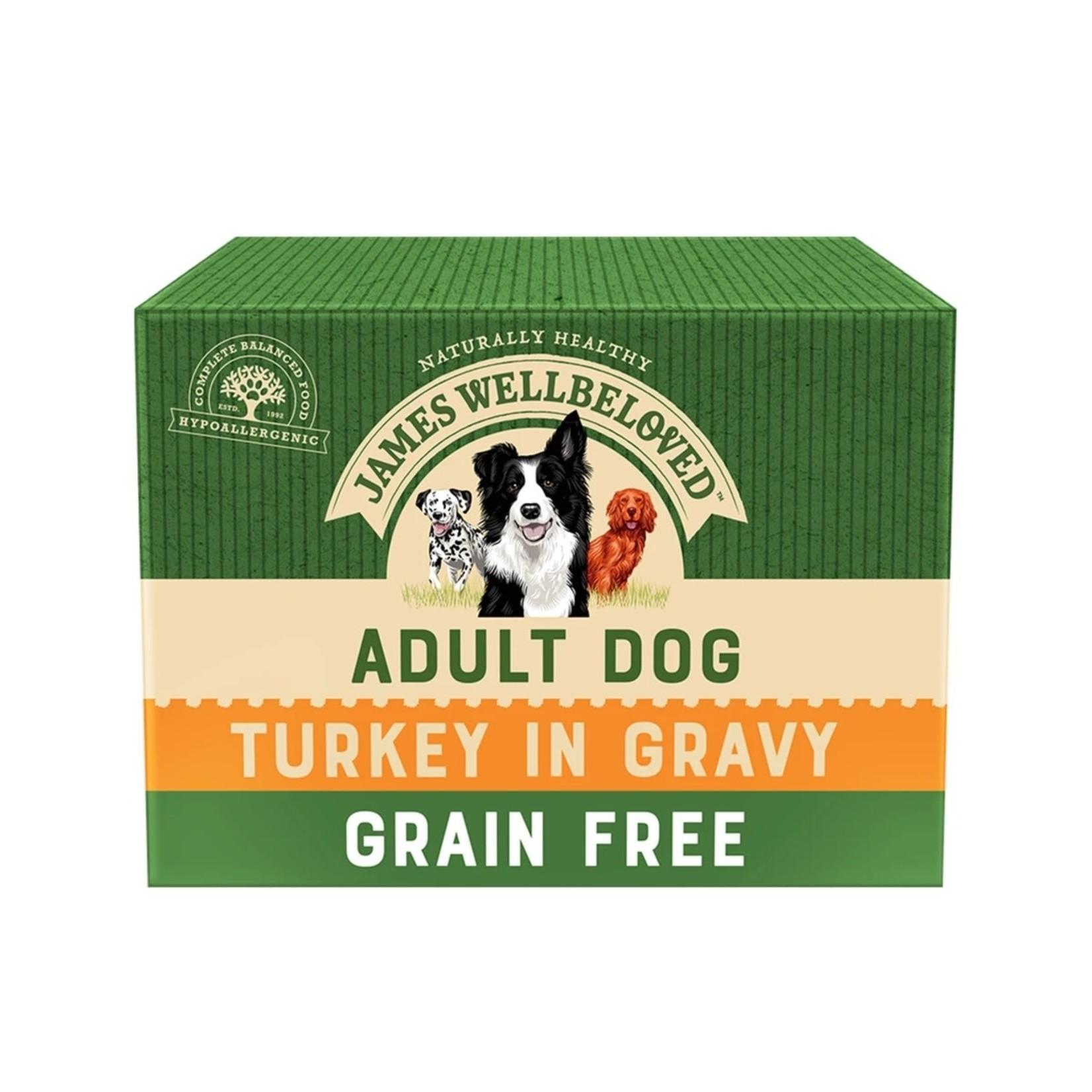 James Wellbeloved Grain Free Adult Dog Wet Food Pouch, Turkey, 100g, Box of 12