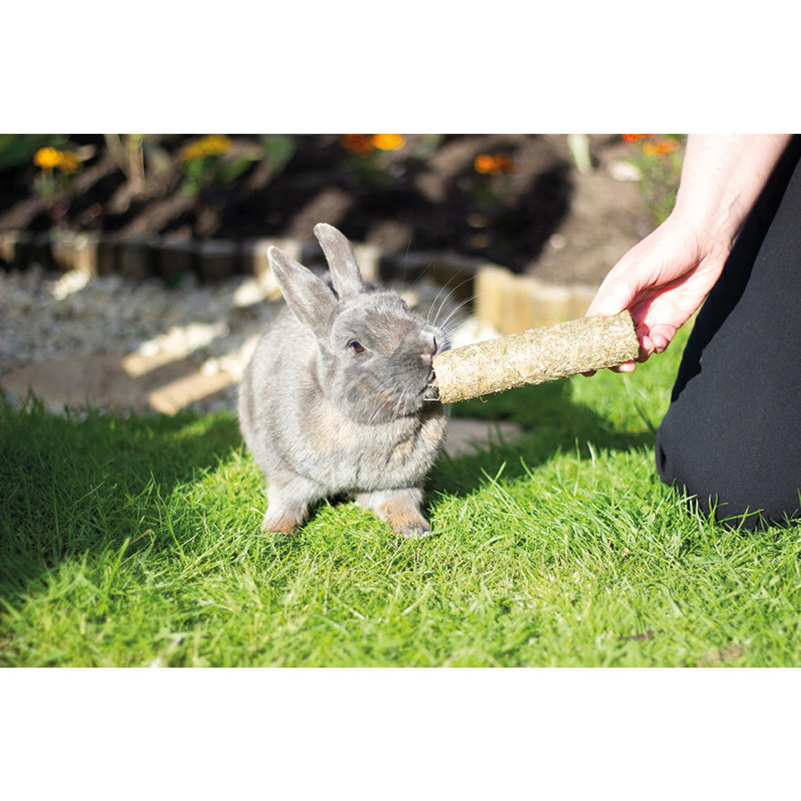Rosewood Boredom Breaker Naturals Pea 'n' Mint Rollers Small Animal Treat, 2 pack