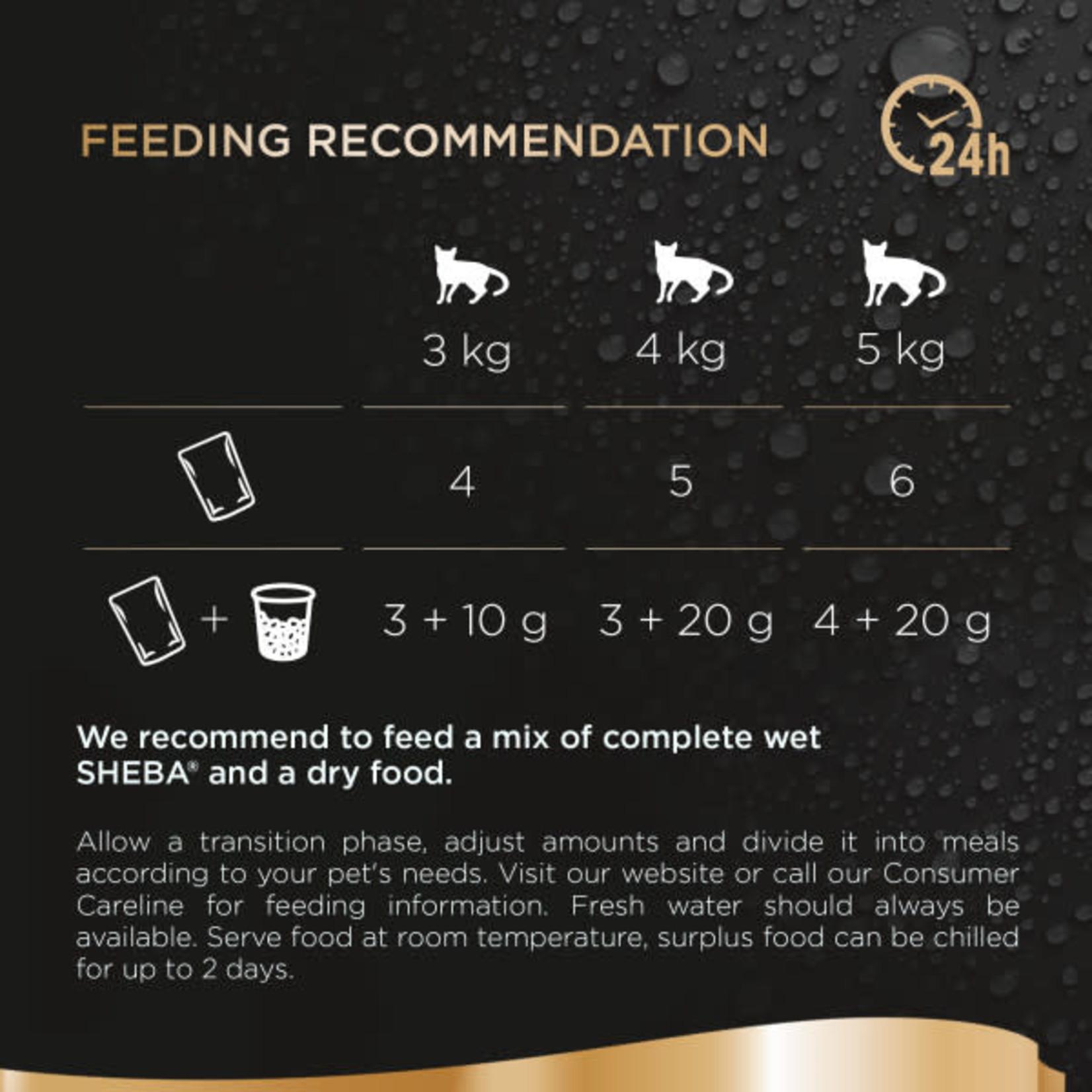 Sheba Fresh & Fine Adult & Senior Cat Wet Food Pouches Beef & Chicken in Gravy, 6 x 50g