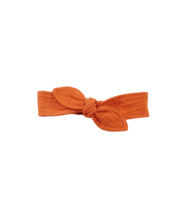 Z8 Haarband Salvia