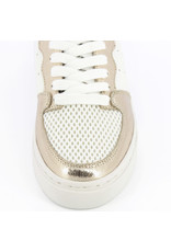 WHITE SNEAKERS WITH GOLD/LEOPARD DETAILS