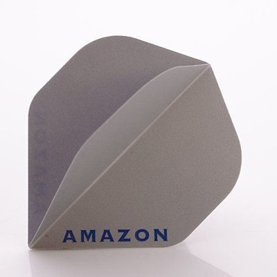 Amazon 100 Silber