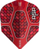 Target Nathan Aspinall Pro Ultra NO6