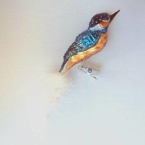 Vogelclip IJsvogel
