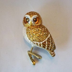 Christmas Decoration Clip Pygmee Owl