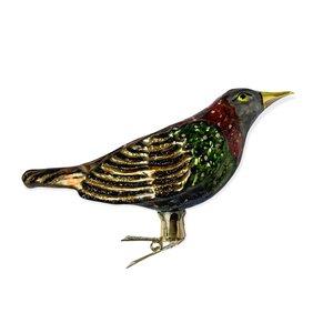 Vogelclip Spreeuw