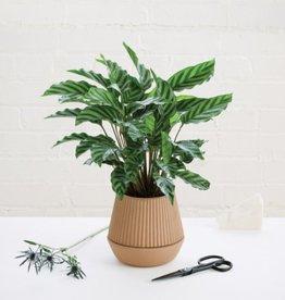 Umbra umbra - pleated planter earthen