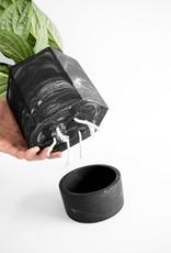 House Racoon House Raccoon - Hapi self watering pot - Black marble