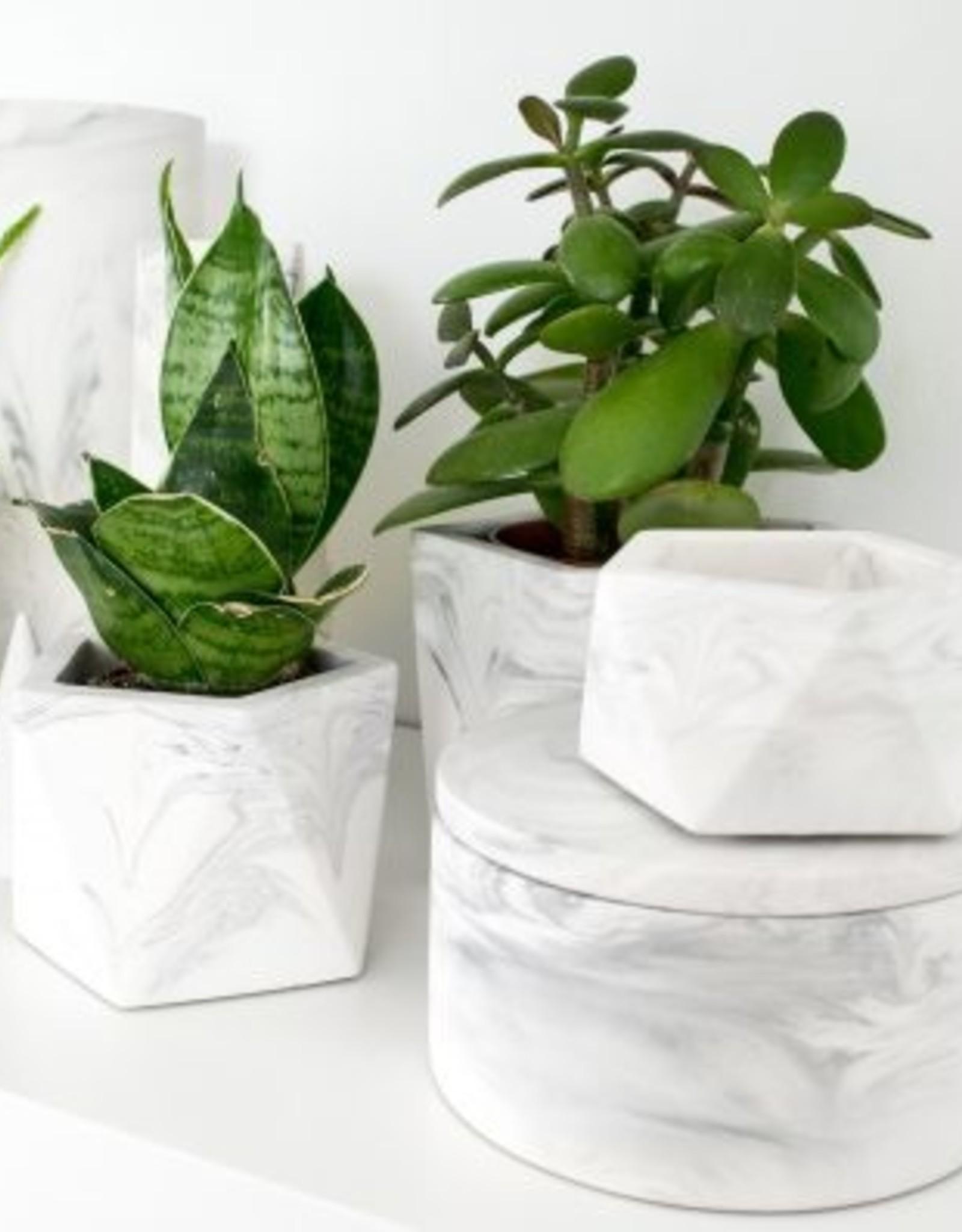 House Raccoon House Raccoon - Palua planter - Large - White Marble