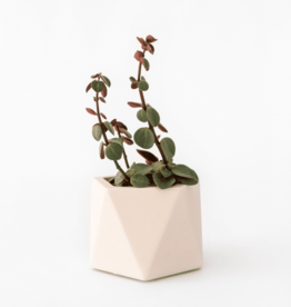 House Racoon House Racoon - Mare planter - Medium - Millennial Pink