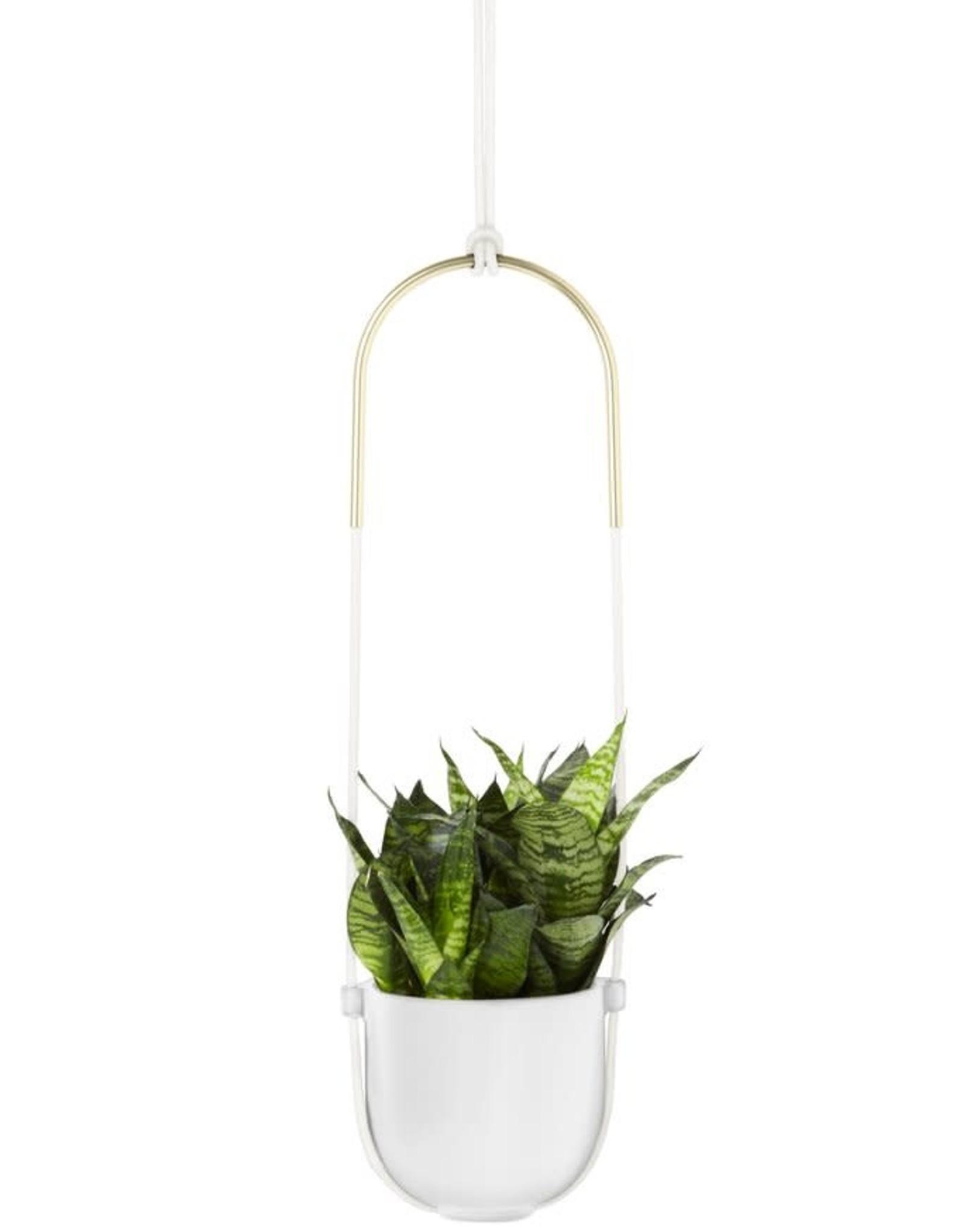 Umbra Umbra- Prisma Bolo planter White
