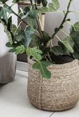 House Doctor House Doctor - Basket plant - Large