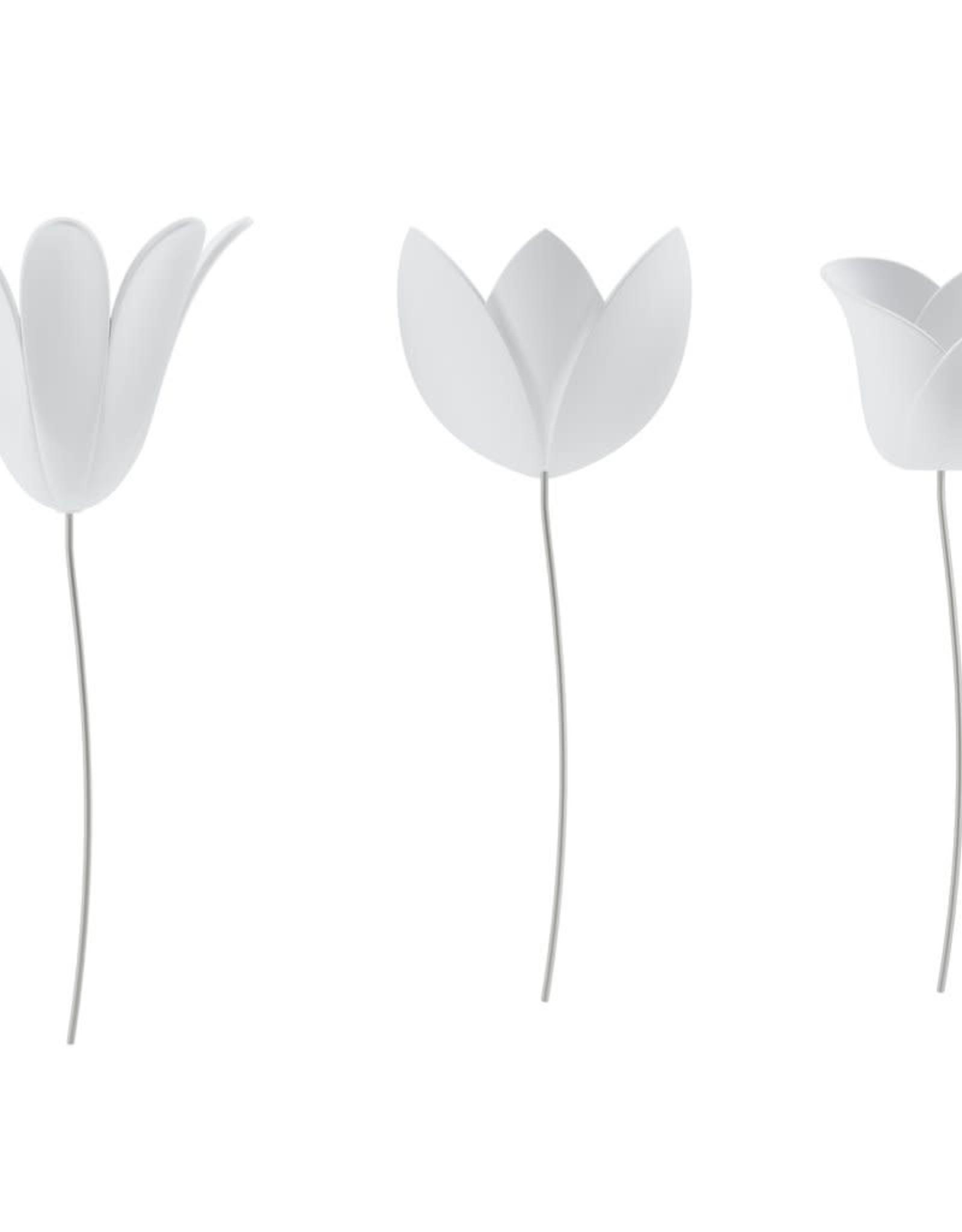 Umbra Umbra - Bloomer wd white