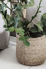 House Doctor House Doctor - Basket plant - medium